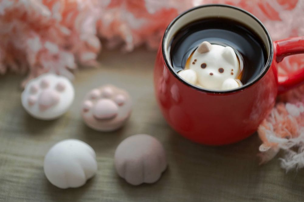 Photo attribution: Photo courtesy of http://www.mymodernmet.com/profiles/blogs/adorable-marshmallow-cats-float-inside-coffee-cups