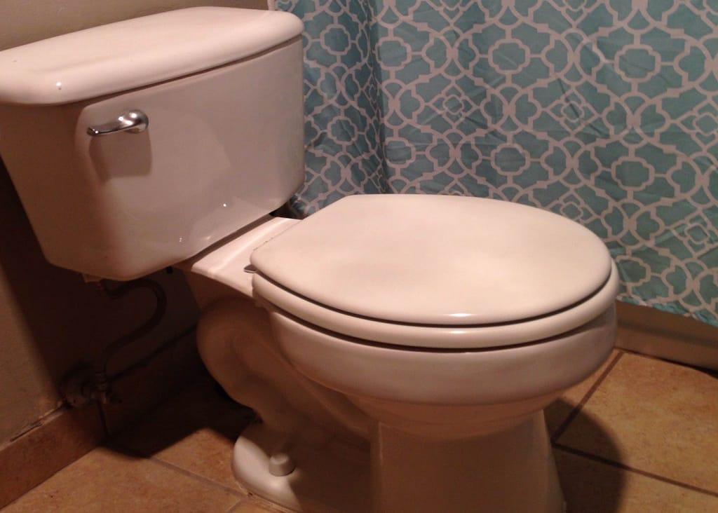 regular-toilet-seat