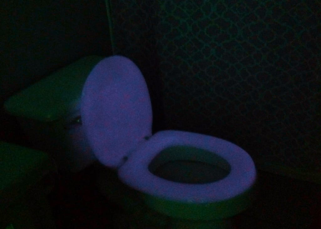 skymall-glowing-toilet-seat