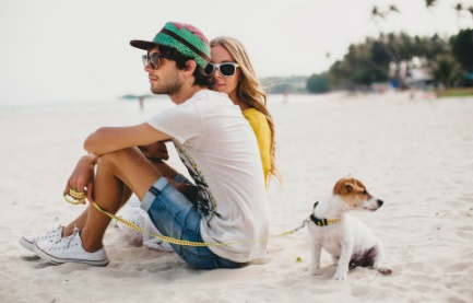 Budget Travel With Your Pet