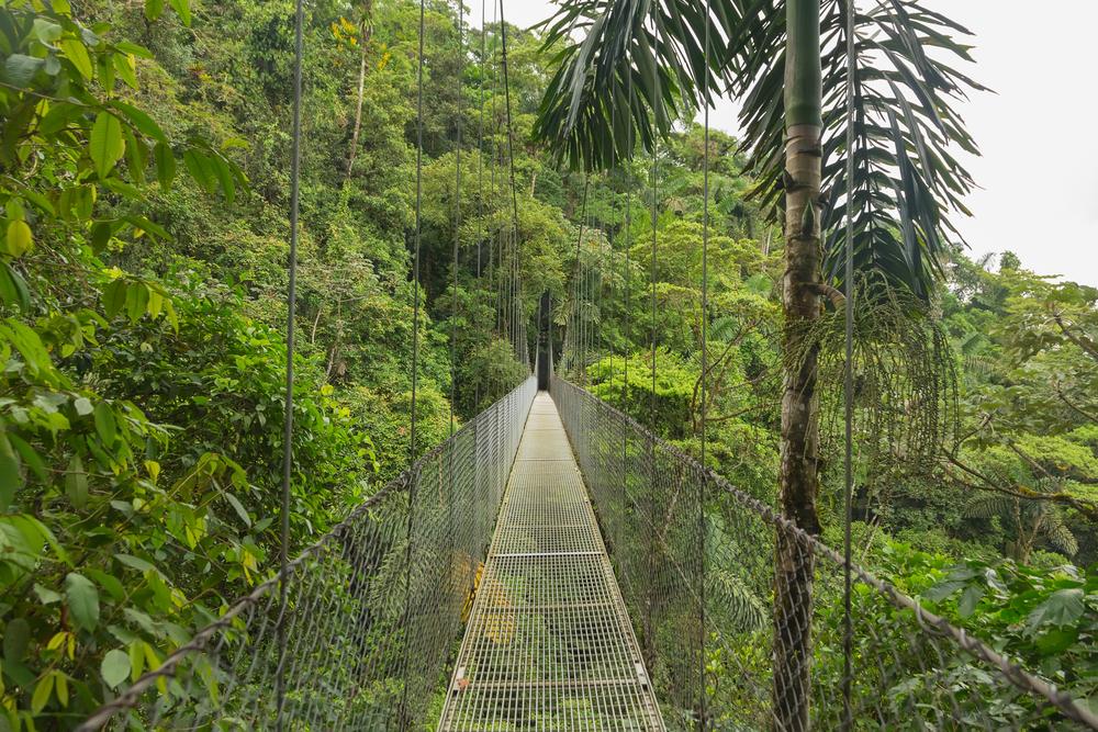 Body - Costa Rica